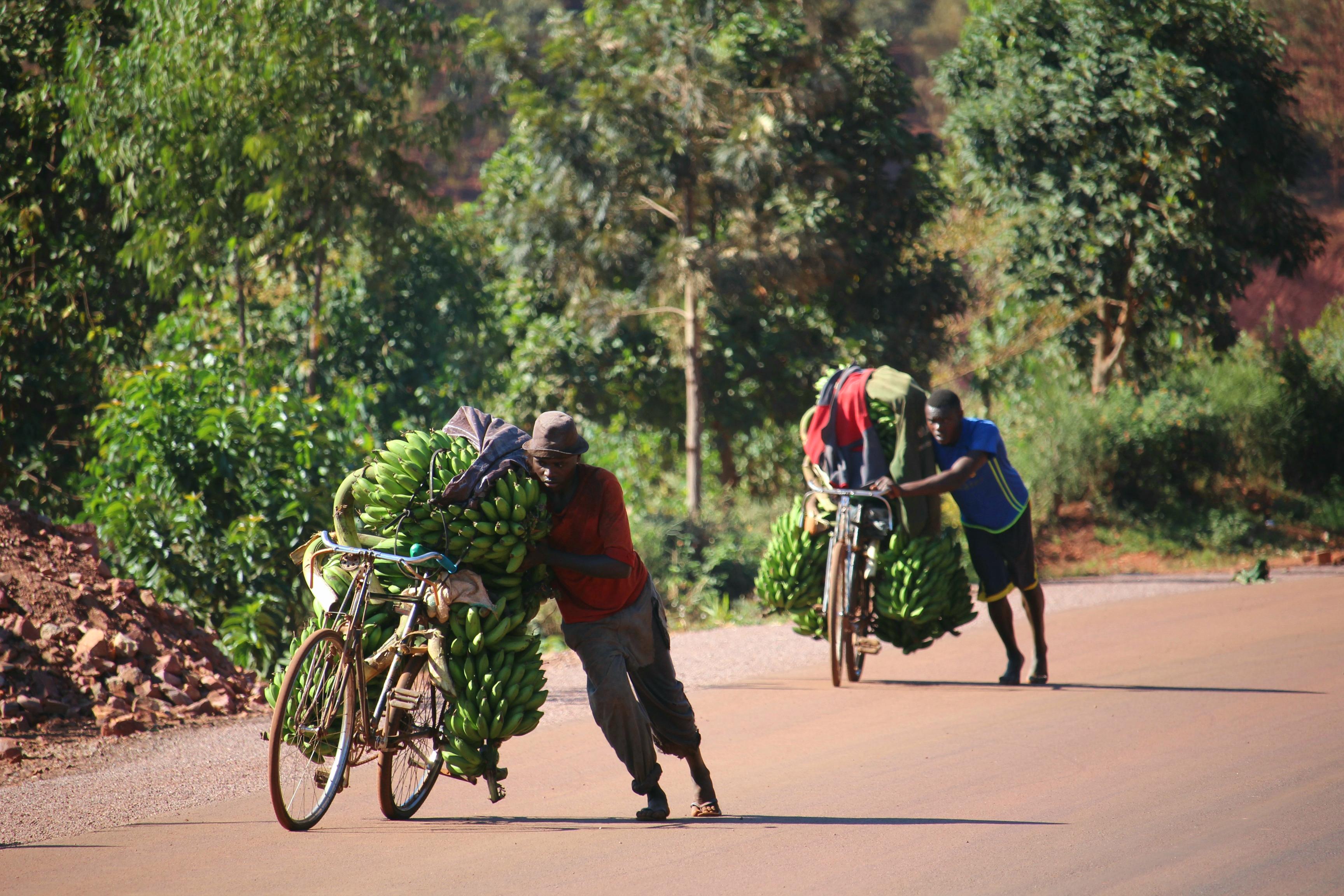Rwanda, le pays aux milles collines