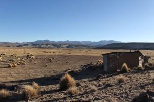 Altiplano Chili